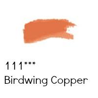 birdwing copper